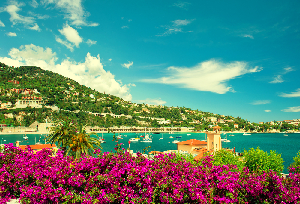 View of the French Riviera with purple flowers